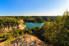 猎物或湖或者池塘有沙滩的,绿色水,树和 免版税库存图片