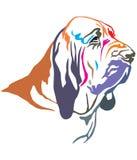 猎犬传染媒介例证五颜六色的装饰画象  皇族释放例证