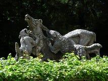 猎犬雕象 库存图片