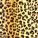 猎豹皮肤无缝的表面样式,豹子皮肤纺织品设计的,织品打印,时尚重复样式, 皇族释放例证