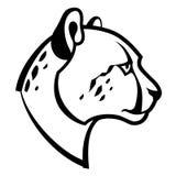 猎豹头 免版税库存照片