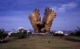 猎鹰环形交通枢纽在富查伊拉,阿拉伯联合酋长国 库存图片