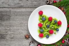 猕猴桃与杉树的圣诞树分支在土气木桌 孩子的滑稽的食物想法 免版税库存图片