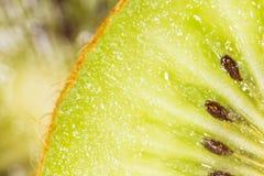 猕猴桃作为背景 2009朵超级花宏观的夏天 免版税图库摄影