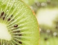 猕猴桃作为背景 2009朵超级花宏观的夏天 库存图片