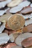 猕猴桃美元硬币 库存图片