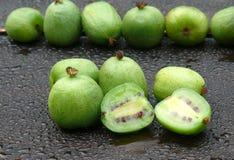 猕猴桃莓果 库存照片