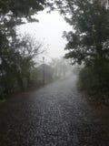 猛冲在山城市一条多雨街道在中美洲 库存照片