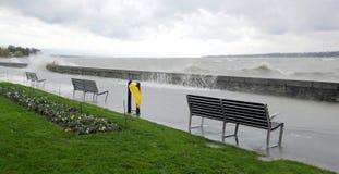猛冲在湖边,日内瓦,瑞士 库存照片