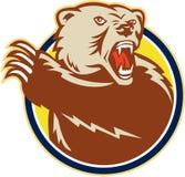 猛击爪子的北美灰熊减速火箭 皇族释放例证