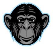 黑猩猩头 免版税库存照片