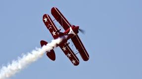 猩红色罗斯发烟性飞行 库存照片