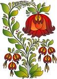 猩红色花 库存图片