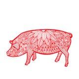 猪中国人黄道带 免版税库存图片