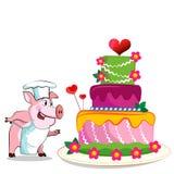 猪厨师-厨师举行。生日蛋糕。 库存照片