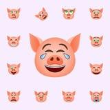 猪哭泣幸福emoji象 网和机动性的猪emoji象全集 皇族释放例证