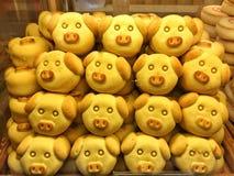 猪型酥皮点心 图库摄影