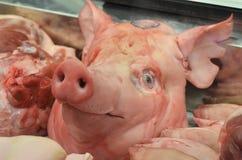 猪头 免版税库存图片