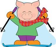 猪滑雪 图库摄影