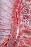 猪的半片胴体 免版税图库摄影
