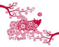 猪的愉快的春节2019年黄道带标志年与红色纸的削减了艺术并且制作在颜色背景的样式 汉语Transl 免版税图库摄影