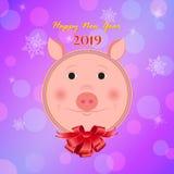 猪的新年 库存图片