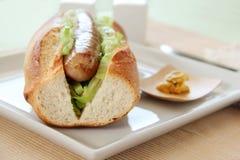 猪肉和圆白菜热狗 免版税库存照片