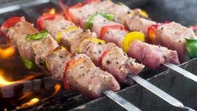 猪肉和在串串起的甜椒 洒与香料和胡椒 在热的煤炭准备 火焰和烟,juic 股票录像