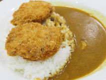 猪肉咖喱用米 免版税库存图片