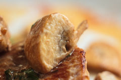 猪肉大奖章用蘑菇酱油 免版税库存图片