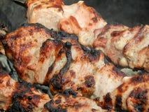 猪肉开胃油煎的串  库存图片