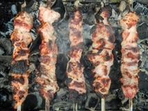 猪肉开胃油煎的串  库存照片