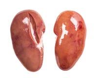 猪肉肾脏  免版税库存图片