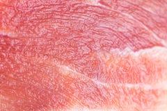 猪肉背景 免版税库存照片