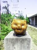猪雕象 免版税库存照片