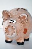 猪贪心银行 库存图片