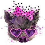 猪T恤杉图表,与飞溅水彩的猪例证构造了背景 图库摄影