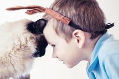 猫一起儿童巴厘语使用 逗人喜爱的朋友 免版税库存图片