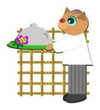 猫主厨膳食服务 库存图片