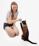 猫乞求为款待 免版税库存照片