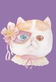 猫佩带的夜花梢面具 库存照片