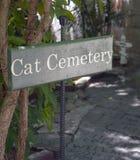 猫公墓 库存照片
