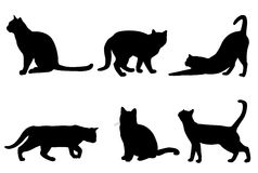 猫剪影汇集 免版税库存图片
