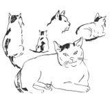 猫剪影用不同的姿势 乱画 免版税库存图片