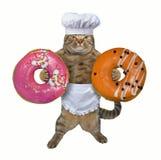 猫厨师拿着两个油炸圈饼 免版税库存图片