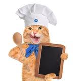 猫厨师 免版税库存图片
