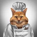 猫厨师 库存照片