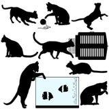 猫反对宠物剪影 免版税库存图片