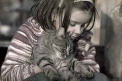 猫可爱我 免版税库存照片