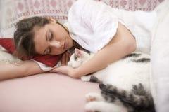 猫可爱我 免版税库存图片